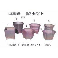 ミニ盆栽鉢セット(4号6品)