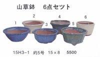 ミニ盆栽鉢セット(5号6品)