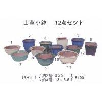 ミニ盆栽鉢セット(3号・4号12品)