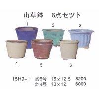 ミニ盆栽鉢セット(4号・5号6品)