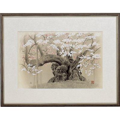 画像1: 「山高神代桜(春爛漫)」 作者/広森雄
