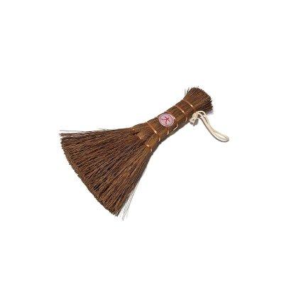 画像1: 盆栽シュロホウキ 大(八木光)