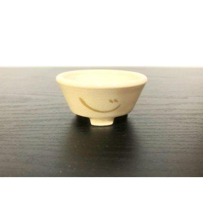 画像2: 沈壽官窯小品盆栽鉢 薩摩焼/薩摩 「金のじ」 盆器外縁